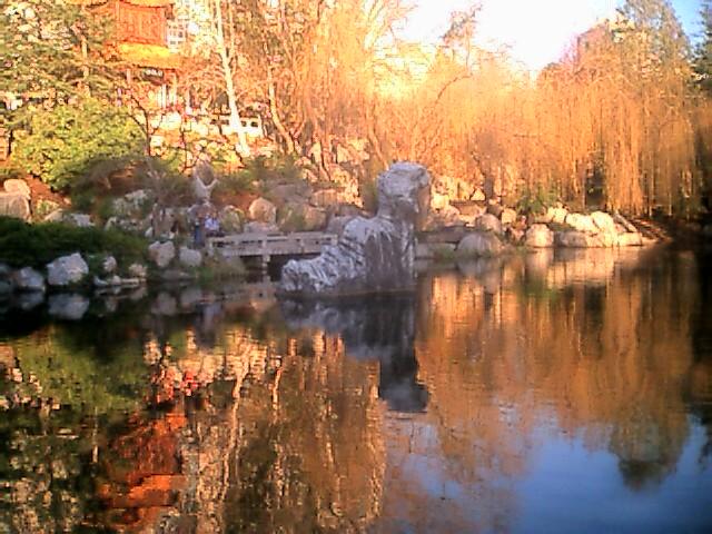 dragon rock stdney chinese gardens